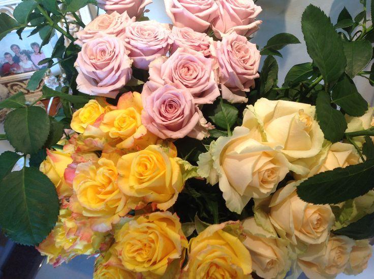 #jabula roses gorgeous