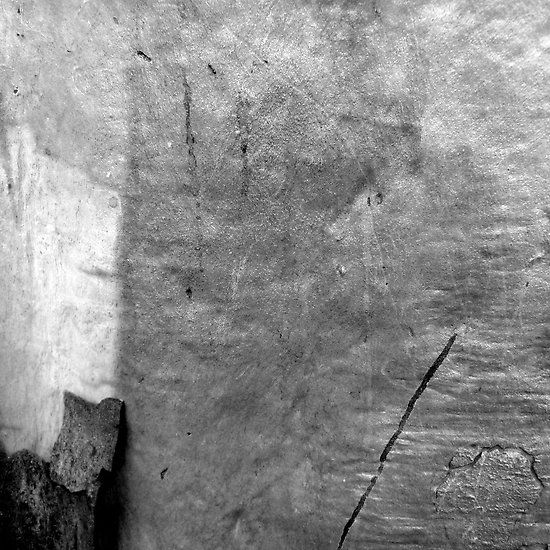Black & White Abstract Bark