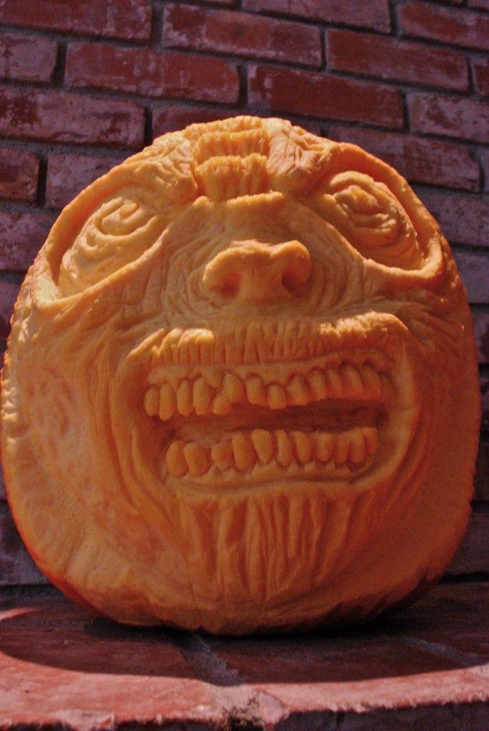 Best images about pick your pumpkin on pinterest