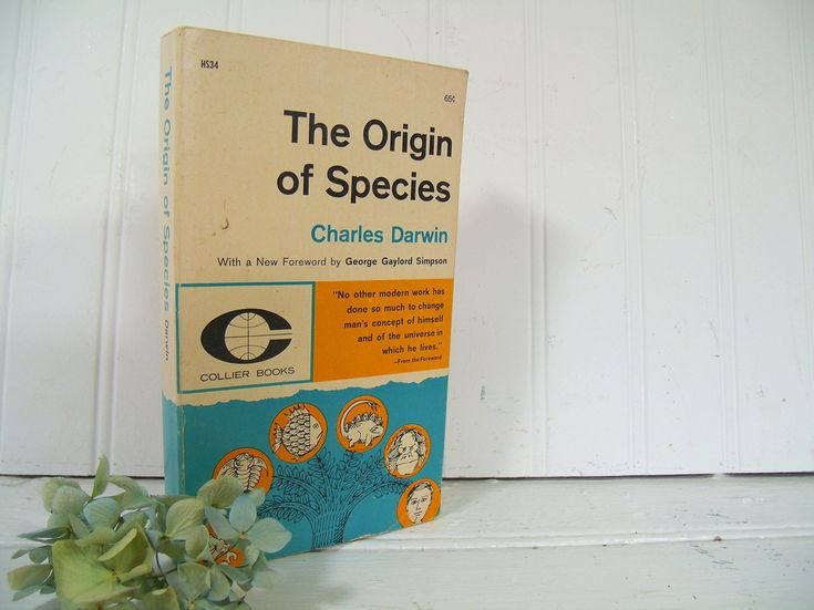 The Origin of Species - Collier Books Paperback Edition - Vintage First Collier Paperback of Charles Darwin's ©1859 The Origin of Species by DivineOrders on Etsy