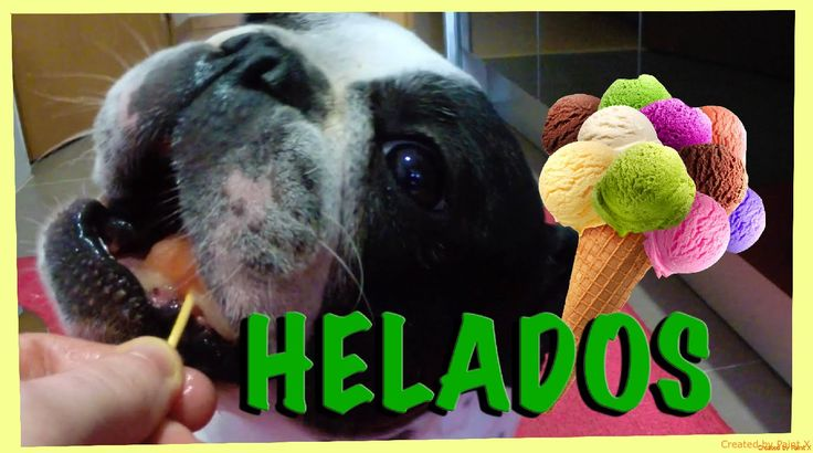 Como hacer helados para perros. How to make ice cream for dogs