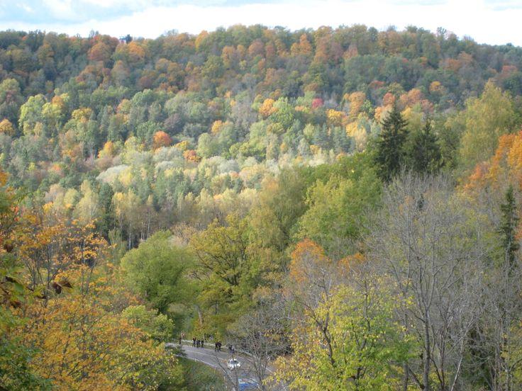 #Herfstkleuren in #Gauja Nationaal Park, #Letland. Ideaal te combineren met een stedentrip #Riga