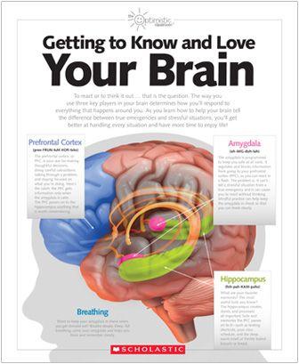 MindUP Curriculum| Scholastic.com thanks Glodie:)