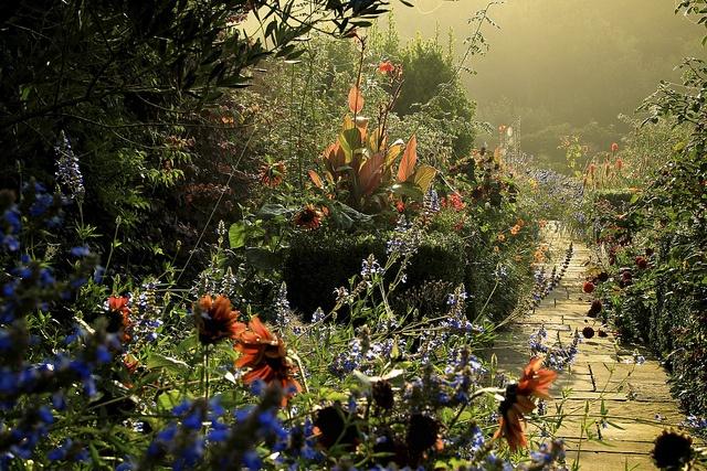 A Sussex Garden