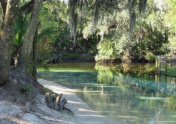 florida camping springs | Lithia Springs: Camp at this cool, secluded park near Tampa