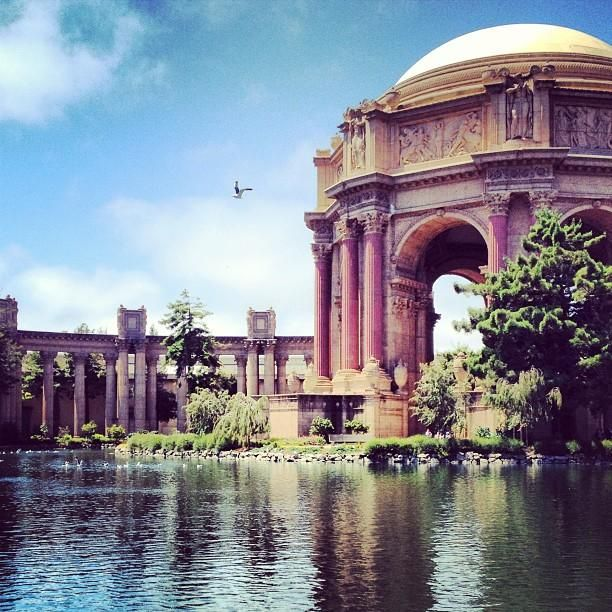 Picnic at San Francisco's Palace of Fine Arts to watch baby swans swim in the lagoon. Photo courtesy of travelholics on Instagram.