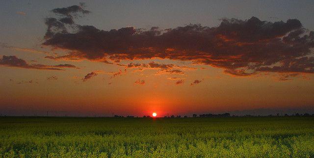 Manitoba prairie sunset