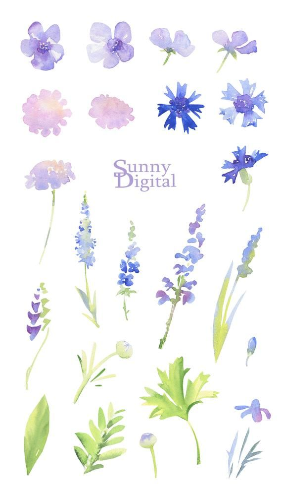 Lavender Shades Clipart Summer Meadow Transparent Watercolor Digital Flower Printable Elements Blue Floral De Flower Printable Digital Flowers Etsy Digital Art