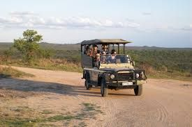 #tours #travel #adventure #accommodation #destination #SouthAfrica #Mountziontours #wildlife #CapeTown #Pilanesberg