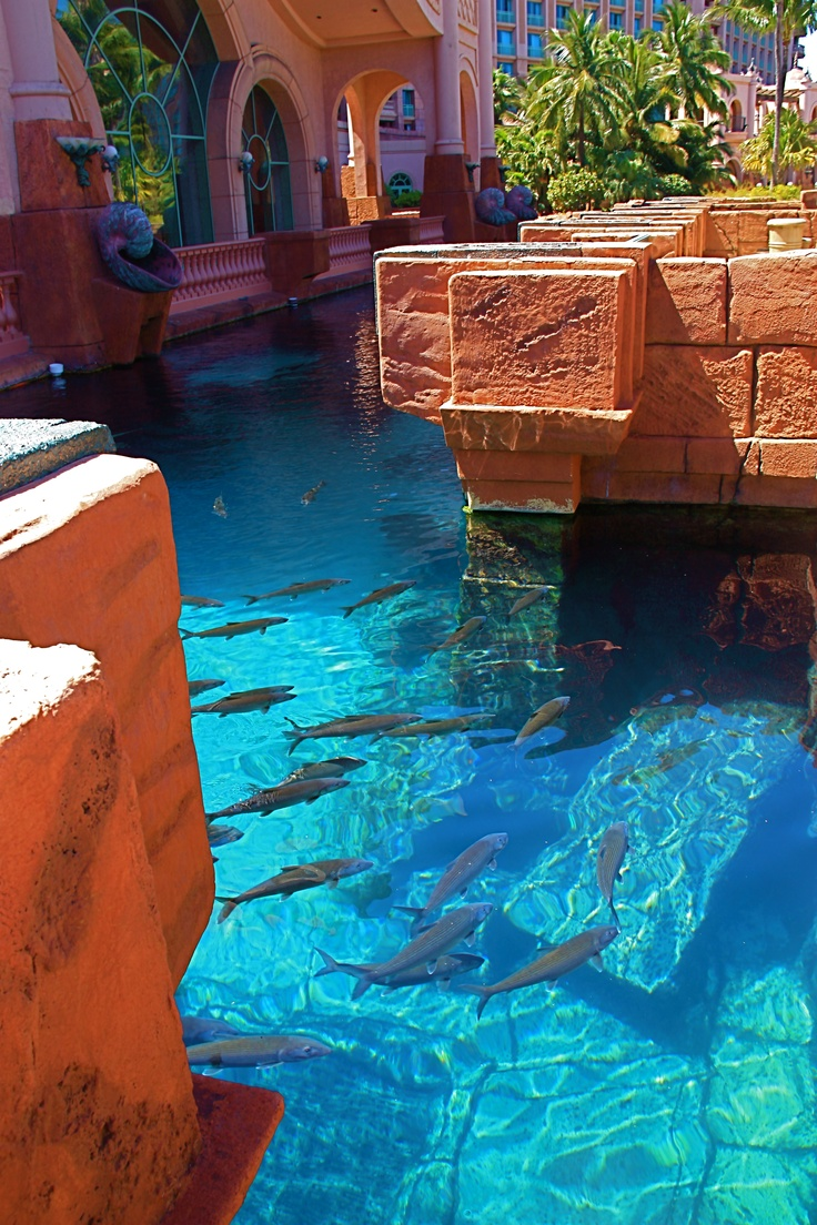 Attractive Atlantis Http://takeavacationsooner.com