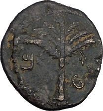 BAR KOKHBA REVOLT for FREEDOM of ISRAEL 131AD Ancient Jewish Rebel Coin i44138 https://trustedmedievalcoins.wordpress.com/2016/03/07/bar-kokhba-revolt-for-freedom-of-israel-131ad-ancient-jewish-rebel-coin-i44138/