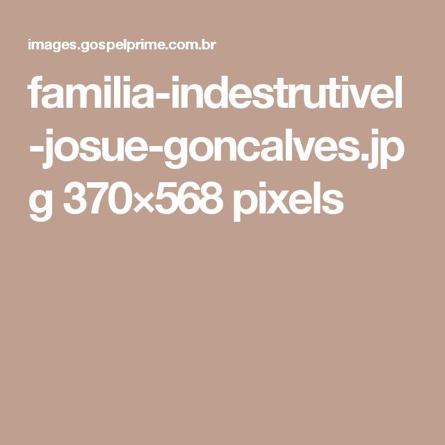 familia-indestrutivel-josue-goncalves.jpg 370×568 pixels