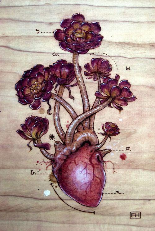 Heart Transplants series by Fay Helfer.  Idea for series - bleeding hearts.
