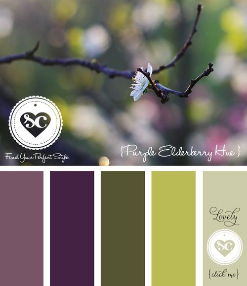 033 Purple Elderberry Hue by Asmalina© 2012 Sorbetcolour ™
