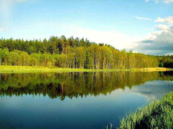 Беларусь – одна из красивейших стран мира, которая сохранила естественность своей природы. В Беларуси полно озер и водных путей. Есть такие озера и реки, которые связаны между собой в водные системы. Так же нашу страну называют «синеокой», потому что у нас есть богатый водный бассейн, который славится на всю Европу. Есть многие озера и реки, которые сейчас сушат и наполняют заново, чтобы благоустроить нашу страну и окружающую природу, делая ее красивой. Многие иностранцы и туристы с…