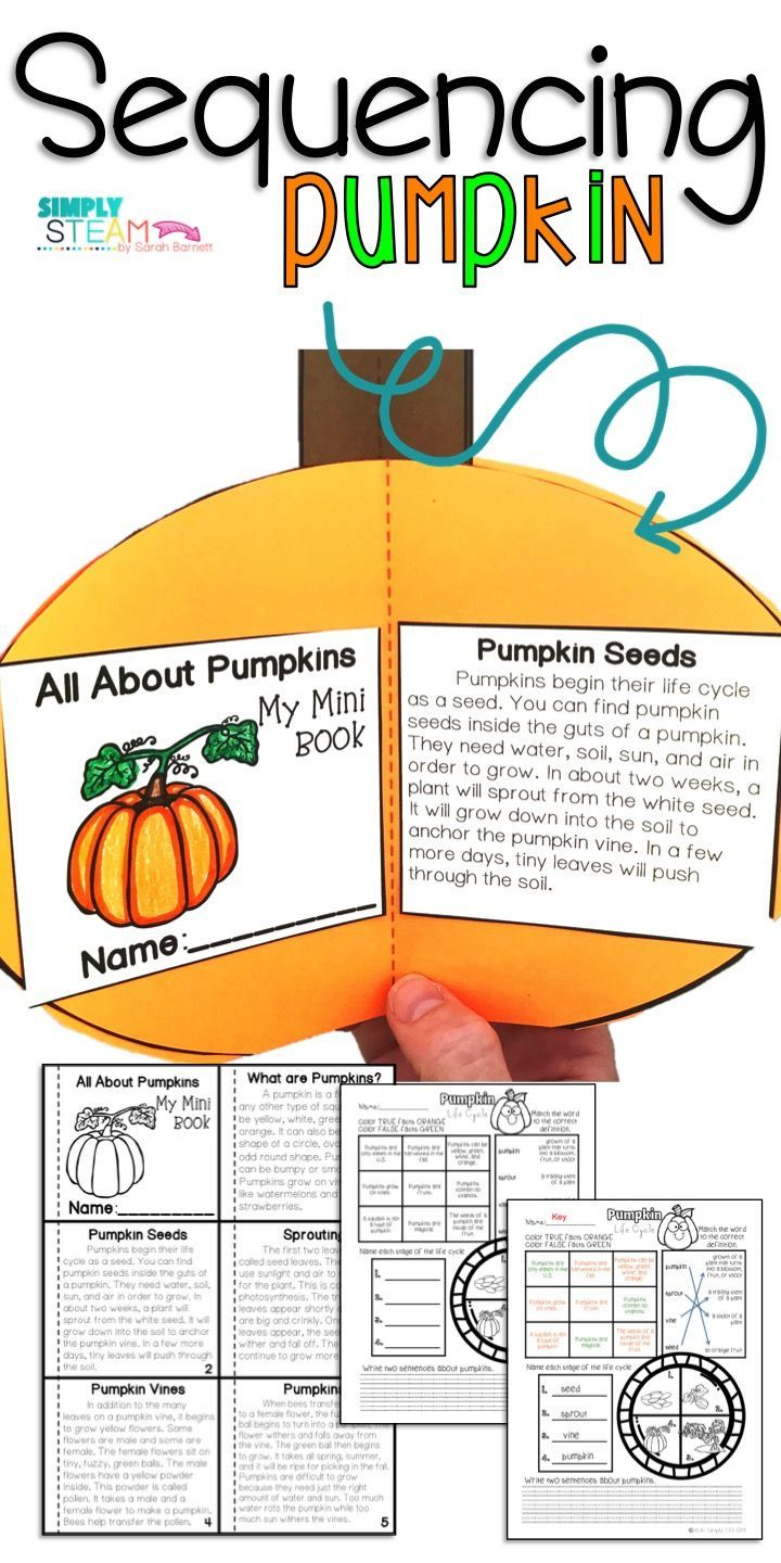 2633 best flippables and interactive notebooks images on pinterest create a 3d pumpkin craft with construction paper and glue the worksheet in sequence to make pumpkin art comes with comprehension printable robcynllc Image collections