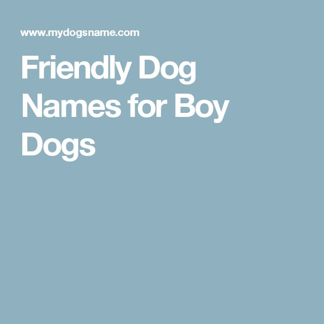 What are the top 10 boy dog names?