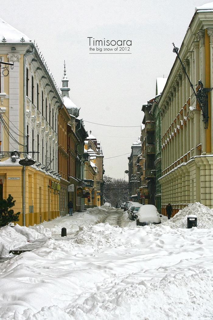 Timisoara, the big snow of 2012