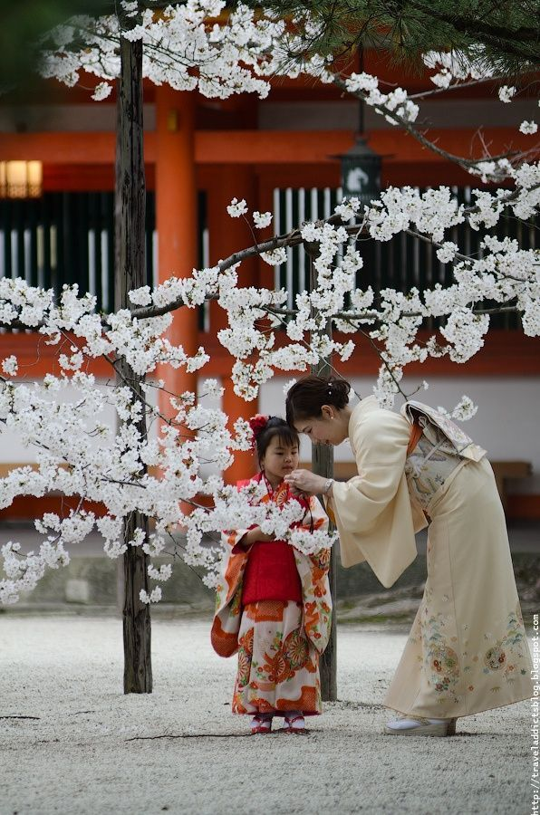 Mutter und Tochter unter Kirschblüten ~ Japan. – …