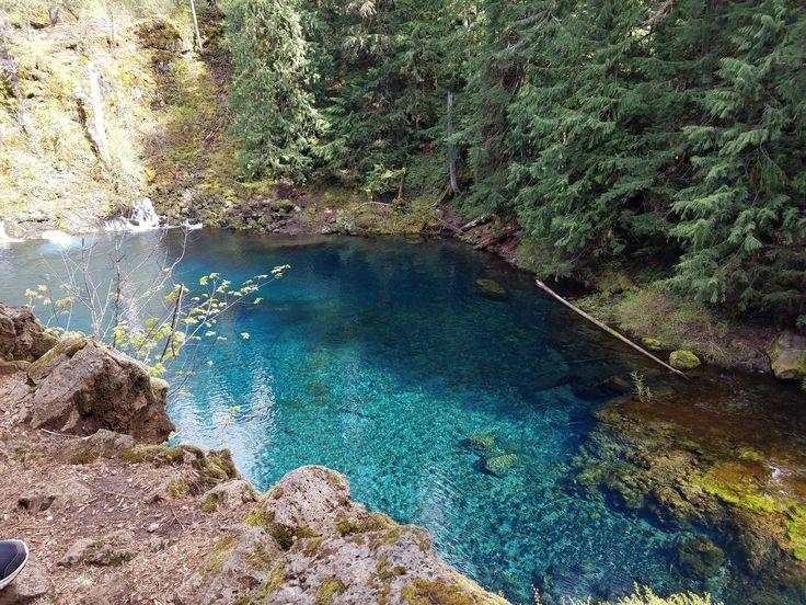 Best 25+ Blue pool oregon ideas on Pinterest Tamolitch pool
