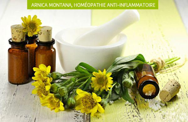 Épinglé par KRISSTOU sur Plantes pour soigner en 2020 | Anti inflammatoire naturel, Anti ...