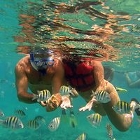 Things to do in Punta Cana: Find Top Attractions, Activities & Tours in Punta Cana | Expedia