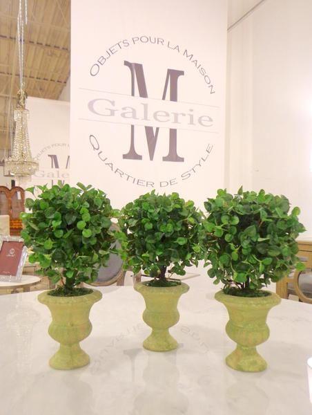 Plant on pedestal