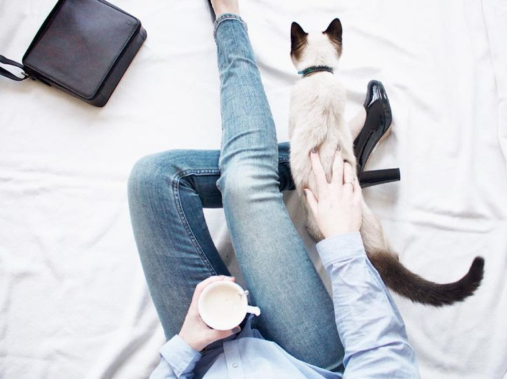 Chain Twenty style -- working from home with coffee, kitty cuddles, heels, jeans