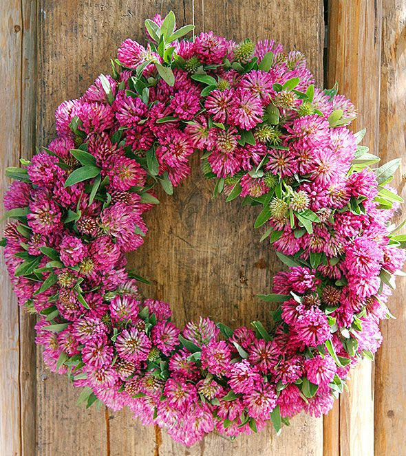 Flowering wreath with red clovers.