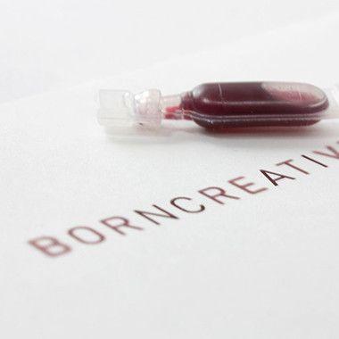 Born Creative  - 포트폴리오