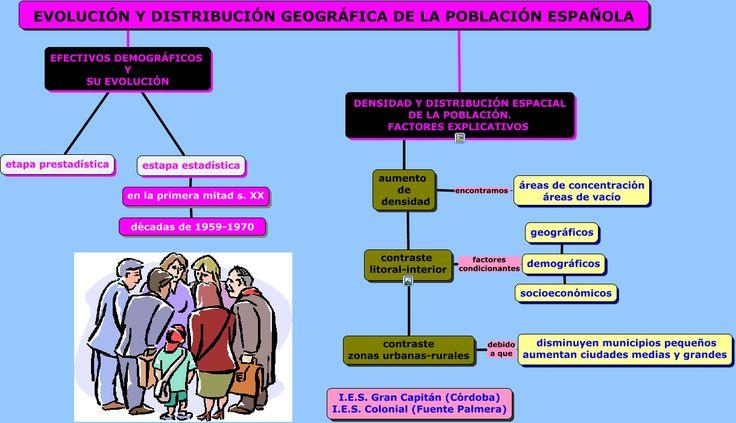 evolucionydistribuciongeografiacadelapoblacionespanola.html