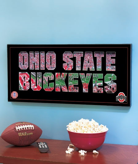 Ohio State Buckeyes Wall Art $17.95