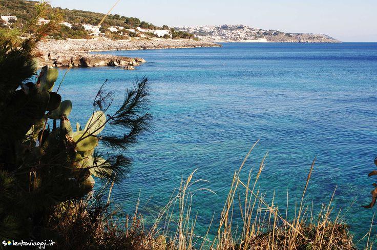 Le acque profonde e cristalline di #MarinadiAndrano a ridosso di un litorale ricco di vegetazione mediterranea.