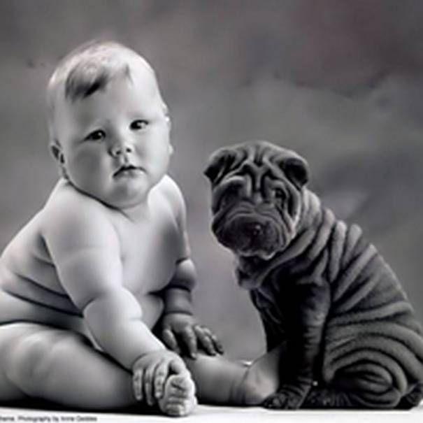 Simple Look Alike Chubby Adorable Dog - fdcaae4efe25a4f8a1b12741b605b85b--anne-geddes-chubby-babies  Image_43848  .jpg