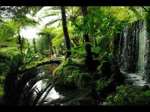 Fotos de: Portugal - Madeira - Funchal - Jadín Tropical Monte Palace - J...