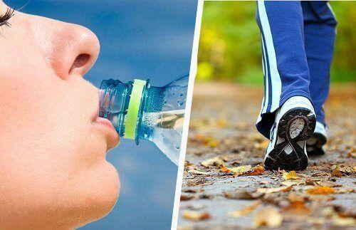 Metabolizm każdego z nas pracuje inaczej, przez co niektórzy muszą włożyć więcej…