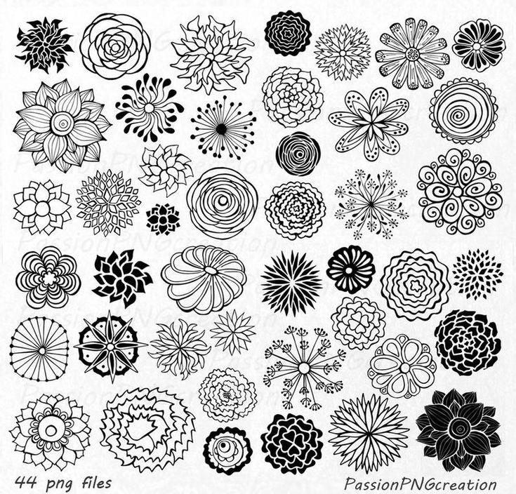 SISTEMA GRANDE Elemento de clipart de flores dibuj…