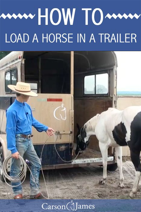 If you have a horse that has a hard time loading into a trailer then this will show you how to fix that problem. Just like everything else related to horse training, you simply make the right thing easy and the wrong thing difficult.