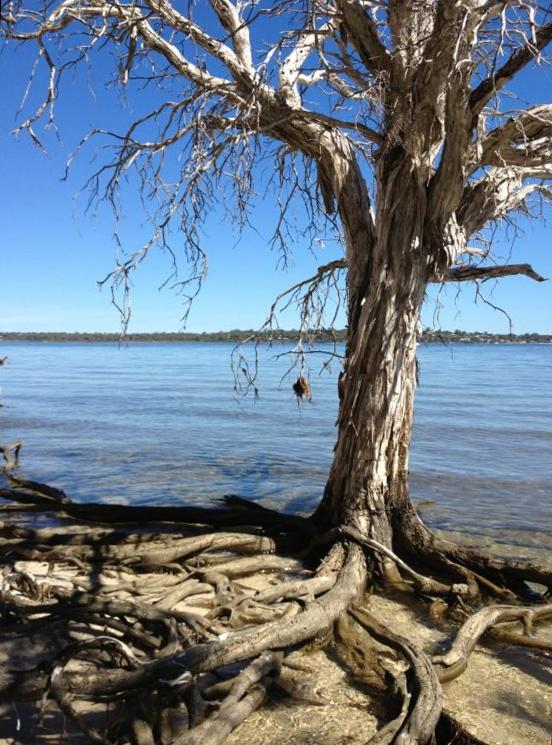 Mandurah Estuary Western Australia at Easter.