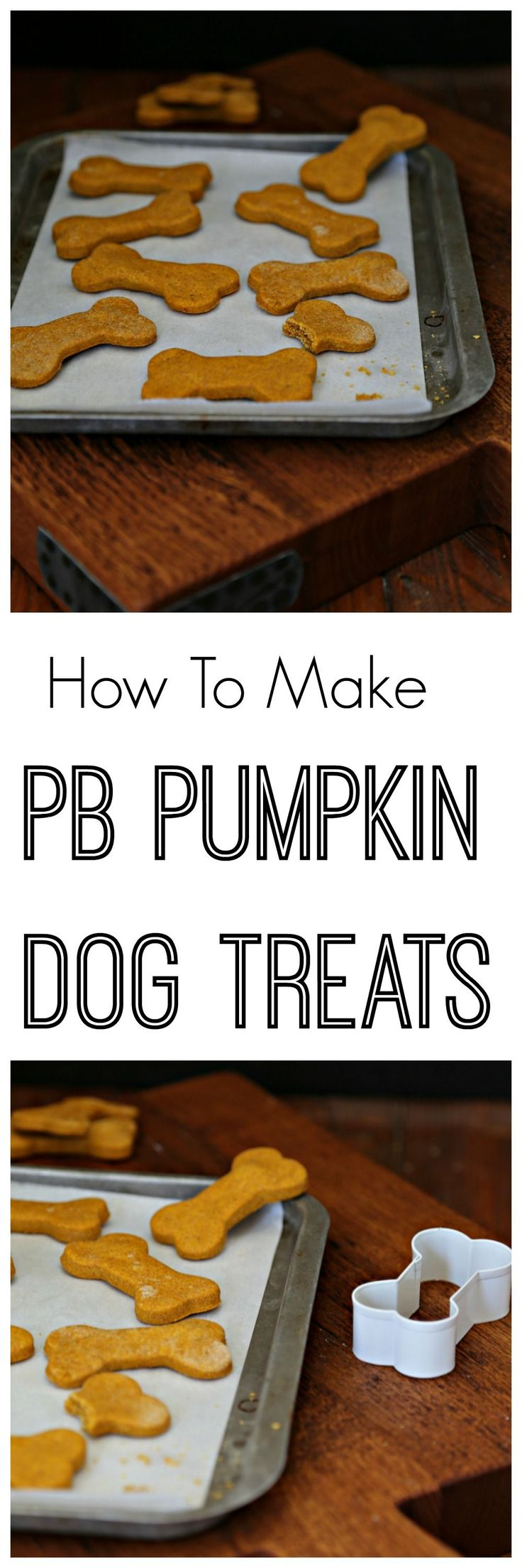 All natural and made with just 4 simple ingredients. Peanut Butter Pumpkin Dog Treats are treats your pups will love. #HealthyDogFood