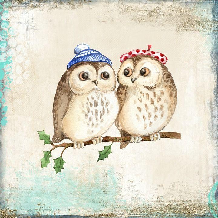 предстала две совы картинка рисунок новый
