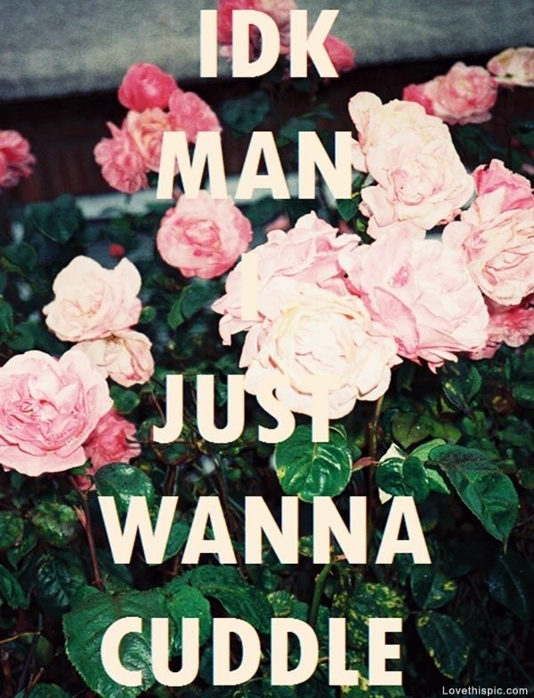 I Want To Cuddle With You Quotes: Just Wanna Cuddle Love Cute Flowers Love Quote Cuddle