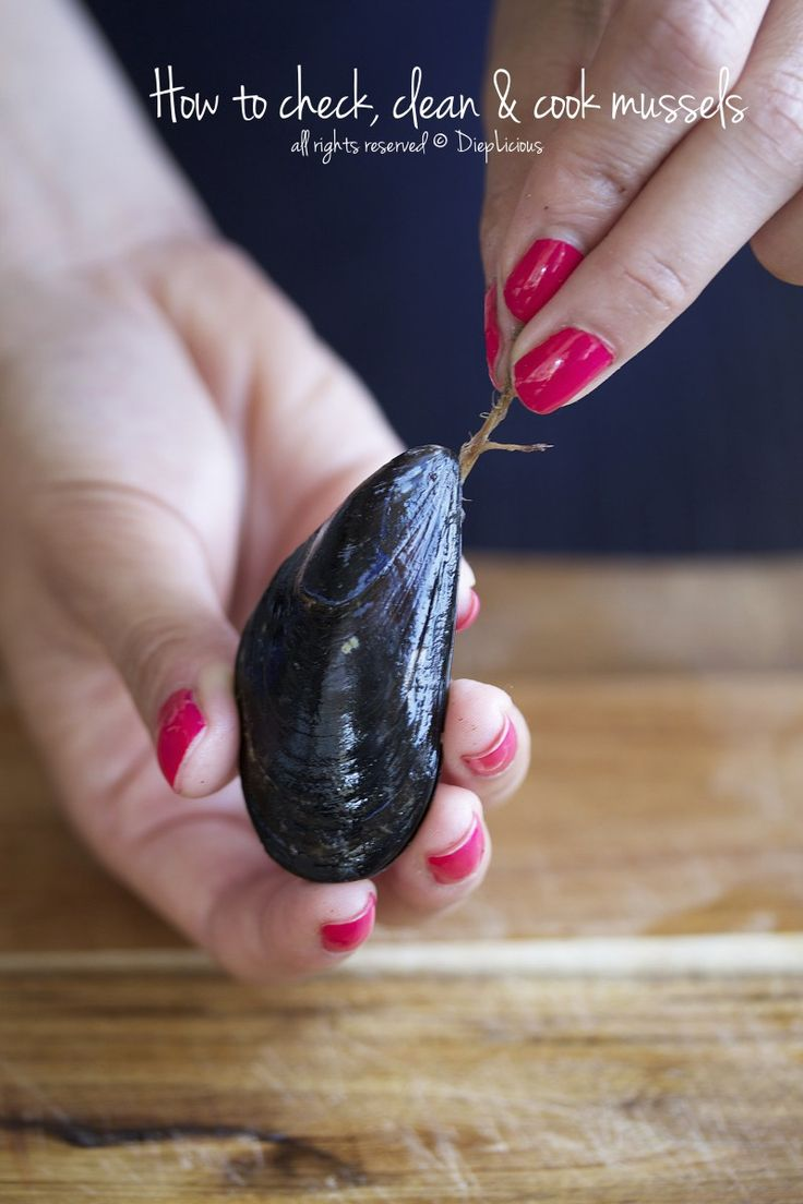 HOW TO CHECK, CLEAN & COOK MUSSELS                                                                                                                                                                                 More
