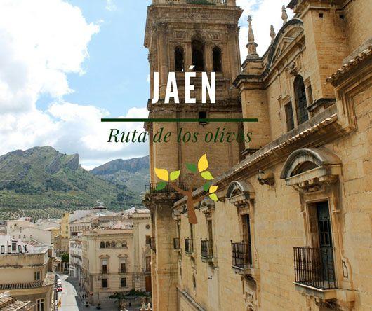 Empezamos nuestra ruta por la provincia de Jaén con su capital para descubrir alguno sus paisajes de olivares más impresionantes. #jaen #andalucia #españa #turismo #tourism #viajes #travel #travelplace #spain