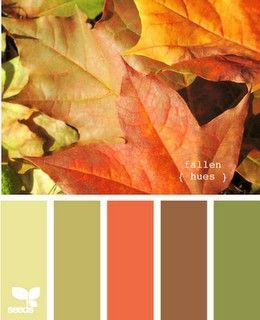 This is basically the color scheme of my living room, and much of my house. Sage green, lime green, orange, brown, red, with dark woods, silver-metallic and white ceramic accents.    http://followpics.co