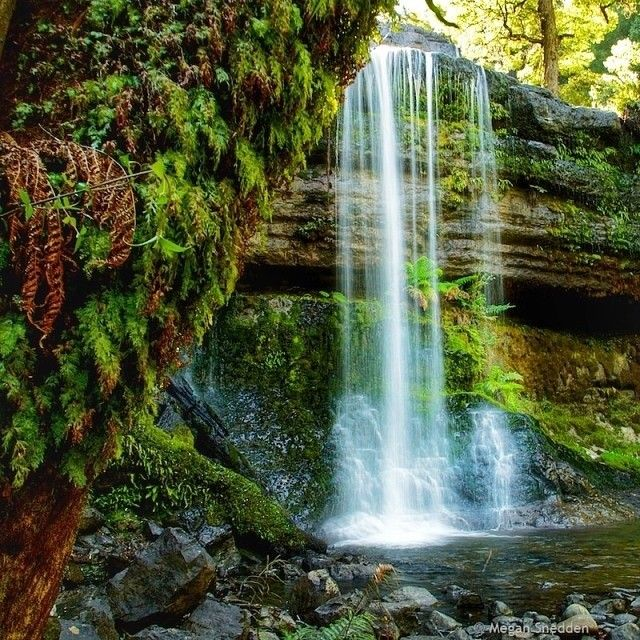 This beautiful shot is Russell Falls at Mount Field National Park in the upper Derwent Valley, just north of Hobart.  Russell Falls is an easy short walk from the entrance of one of Tasmania's most treasured national parks. #discovertasmania #mountfield #russellfalls #tasmania Image Credit: Megan Snedden
