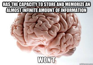 such is my brain before 18,000 midterms.