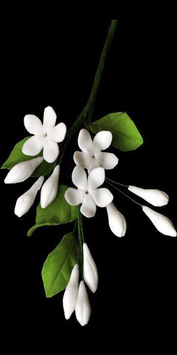 sampaguita gumpaste flower