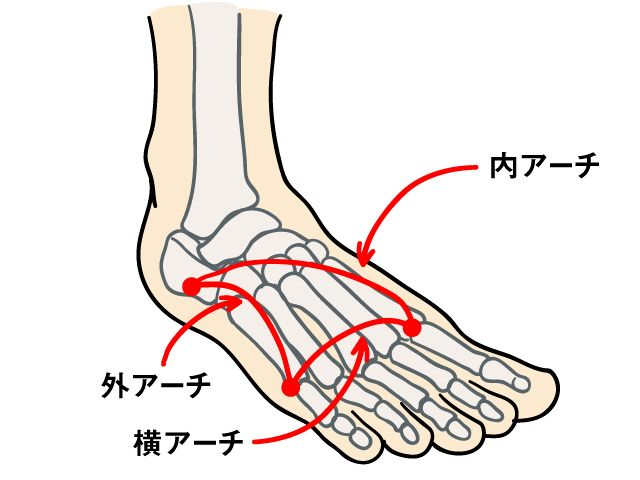 ヒールのある靴を履くことが多い女性は、O脚やX脚、外反母趾など、脚になんらかのトラブルを抱えていることがあります。コンプレックスにもなるこれらの症状を、自分で改善することはできるのでしょうか? そこで、「割り箸ワーク」の方法を紹介してくれた