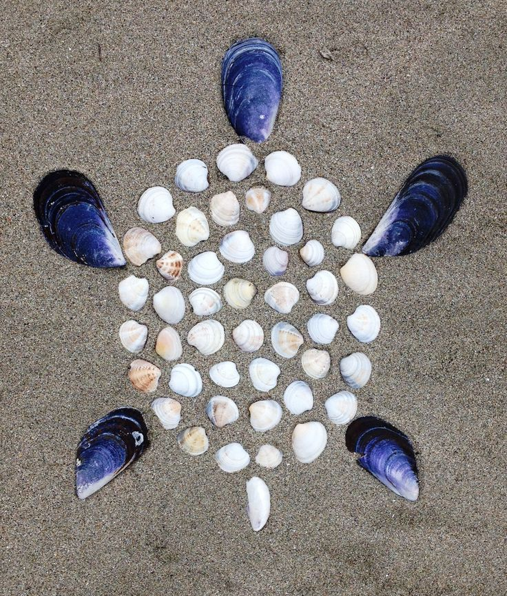 Z kamínků, klacíků, mušlí a jiných přírodnin vytvářejte různé obrázky. Aktivita pro děti, hry na dovolenou, na tábory.